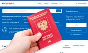 Замена паспорта в 20 и 45 лет через Госуслуги